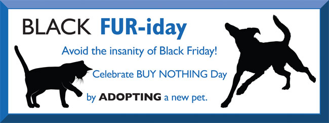 Black FUR-iday banner