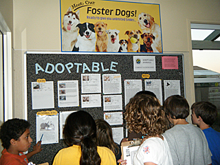 kids viewing foster board sign at shelter