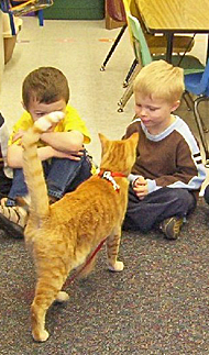 Kids Meeting Guido the Cat in the Classroom